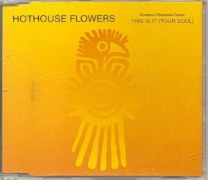 This Is It - Dave Stewart And The Hothouse Flowers