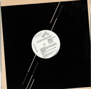 """0311 - Eurythmics - Sisters Are Doin' It For Themselves - The USA - Promo 12"""" Single - JW-14243"""